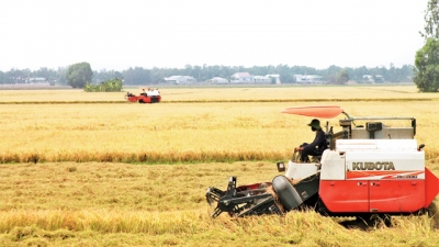 AGPPS 103—The pride of Vietnam's rice sector