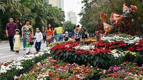 Colourful Spring Flower Festival at Ecopark