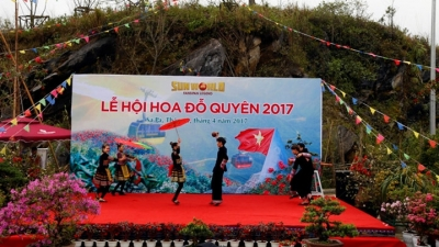 Sapa hosts Rhododendron flower festival