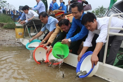Young shrimp, fish released for aquatic resources