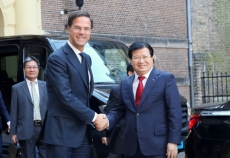 Vietnam, Netherlands to bolster partnership