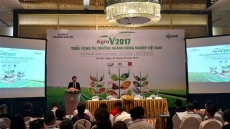 Opportunities for Vietnamese fruit, vegetable exports