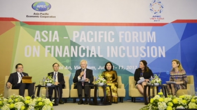 World still faces challenges in financial inclusion: Vietnam banker