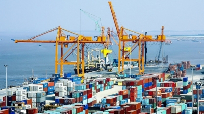 Workshop seeks to facilitate capital access for Vietnam exporters
