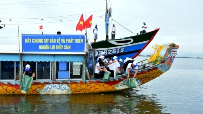 Thua Thien-Hue: Breeds released to restore aquatic resources following Formosa incident