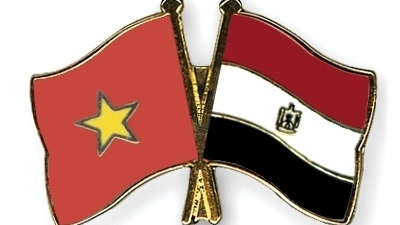 Further accelerating friendly cooperative relations between Vietnam and Egypt
