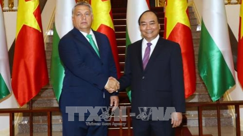 Solidifying traditional friendship and multifaceted cooperation between Vietnam and Hungary