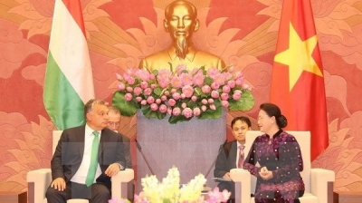 Hungary willing to share e-government building experience with Vietnam