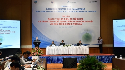 Integrated strategy can facilitate Vietnam's management of disaster risks
