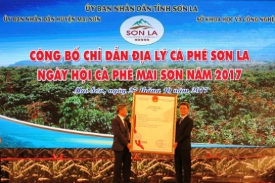 Festival honours Mai Son coffee in Son La