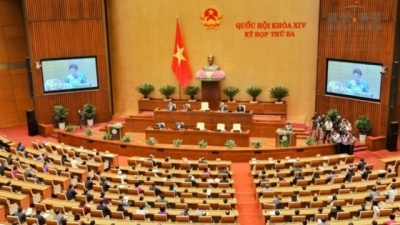 October 23-29: Fourth plenary session of the 14th National Assembly opens