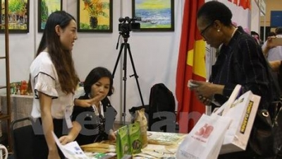 Vietnam attends Africa-ASEAN Business Expo in South Africa