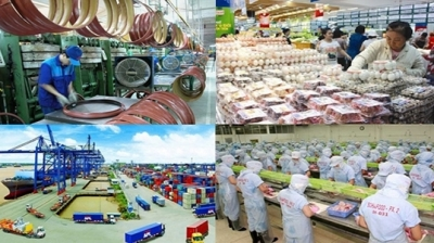 Vietnam's economy maintains positive growth momentum: financial supervision commission