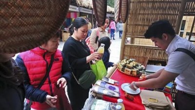 Hanoi fair introduces regional specialties