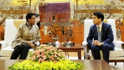 Hanoi leader hails contribution of South African ambassador