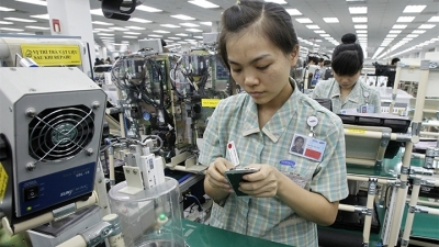 Vietnam's FDI policy needs revision to maximise benefits
