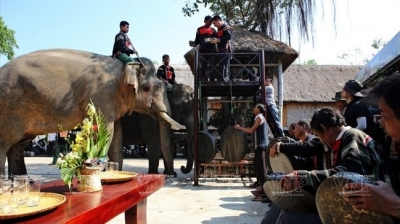 Dak Lak woos visitors with community-based tourism