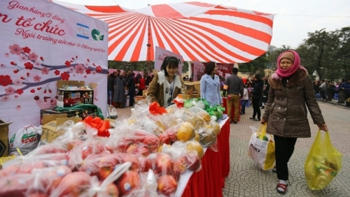 Hanoi charity market held for patients and poor ahead of Tet