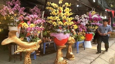 Vietnam imports flowers worth US$18 million for Tet