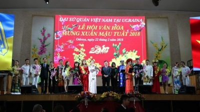 Spring festival launches Vietnamese culture year in Ukraine