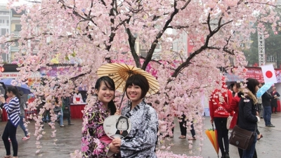 Cultural exchange event highlights Japan's charm in Hanoi