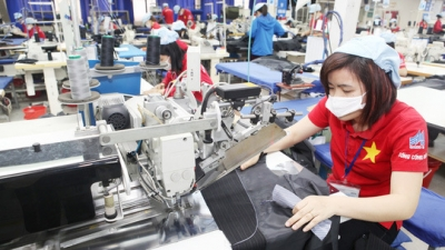 CPTPP an opportunity for Vietnam to modernise labour legislation: ILO official
