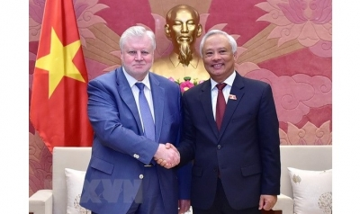 Vietnam treasures ties with Russia: Vice NA Chairman