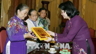 Vice President receives national contributors from Tien Giang province