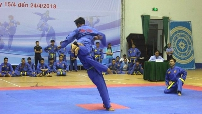 Over 400 Vovinam martial artists compete at 2018 National Champs