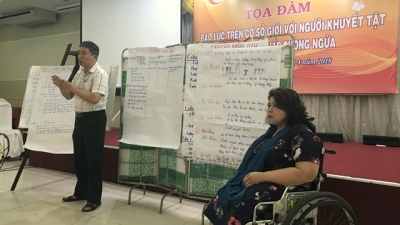 Da Nang hosts first consultation on gender violence against people with disabilities