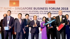 Vietnam - Singapore agree joint venture on aircraft maintenance