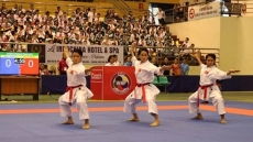Vietnam wins 29 golds at regional karate tourney