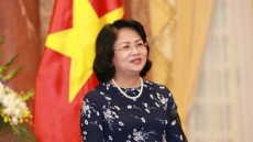 Vice President meets overseas Vietnamese in Laos