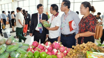 Vietnamese, Chinese border localities discuss ways to promote trade of agricultural products