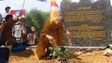 Sri Lanka's Bodhi tree planted at Tam Chuc Pagoda