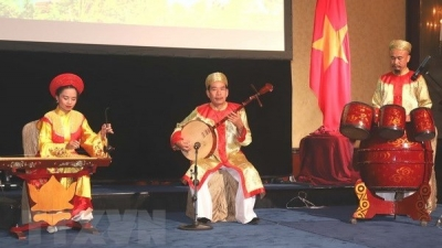 Vietnamese Cultural Day held in Singapore