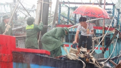 Bebinca makes landfall in Thanh Hoa, weakens to tropical depression