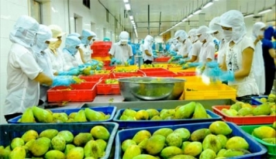 Agroforestry-fishery exports generate US$ 25.7 billion in 8 months