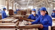 Forestry exports reach US$ 6.64 billion