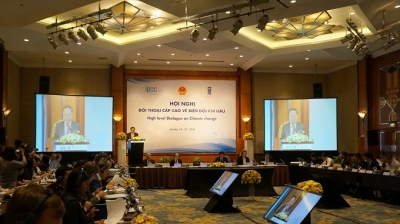 Vietnam actively implements international commitments and efforts to cope with climate change: Deputy Minister