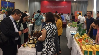Programme launched to boost consumption of Vietnamese goods