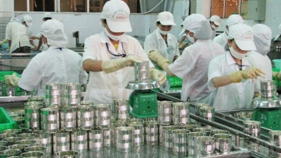 Approval of CPTPP brings Vietnam closer to international labour standards