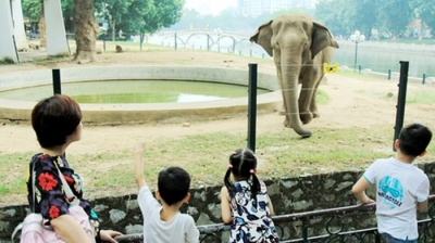 Hanoi Zoo recognised as tourist site