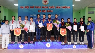Hanoi tops National Games medal tally with 177 golds