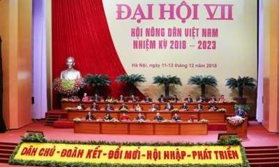 Promoting the role of Vietnam Farmers' Union in developing agriculture, farmers' livelihoods and rural areas