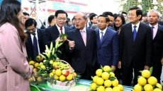 Local festival promotes oranges and farm produce in Ha Tinh