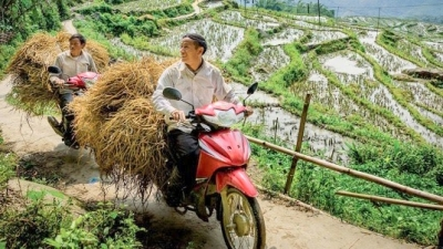 Vietnam's Hoang Lien Son mountain range listed among best trips for 2019