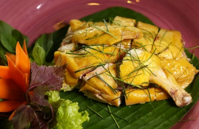 Hill Chicken in Tien Yen