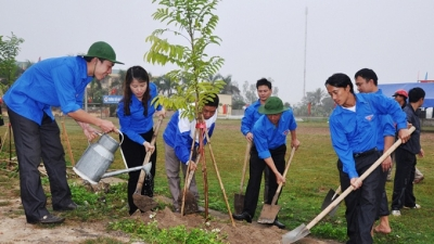 Effectively implementing New Year tree-planting festival