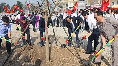 Tet tree-planting festival launched nationwide